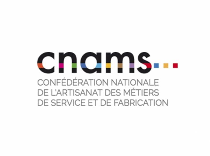 Logo CNAMS